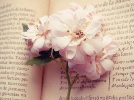 book flower, selflove, writing